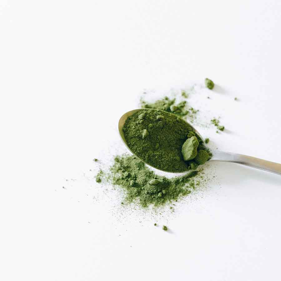 You are currently viewing Matcha Mania
